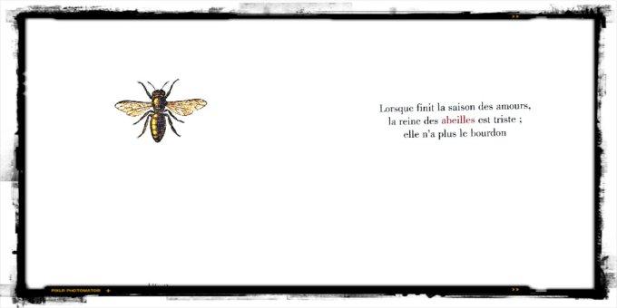 abeille
