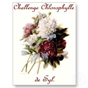 un_bouquet_des_pivoines_par_pierre_joseph_redoute_carte_postale-p239705535488341428baanr_400