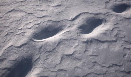 pas-sur-la-neige