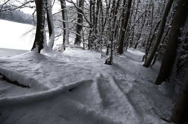 soupir-de-la-neige