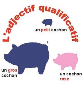 cochon_adjectif