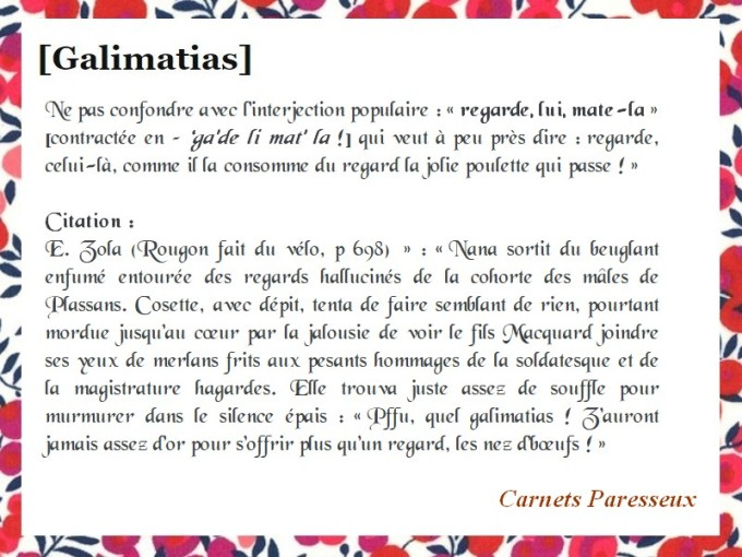GALIMATIAS CARNETS 2